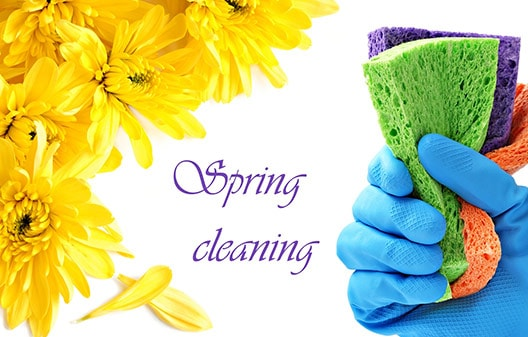 Spring Cleaning Service