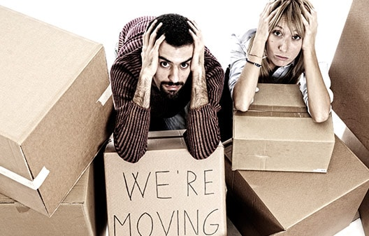 Move-in and Move-out Cleaning Service